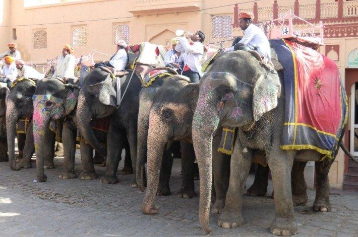 Gebuchte Indien Rundreise Reisebüro Regensburg