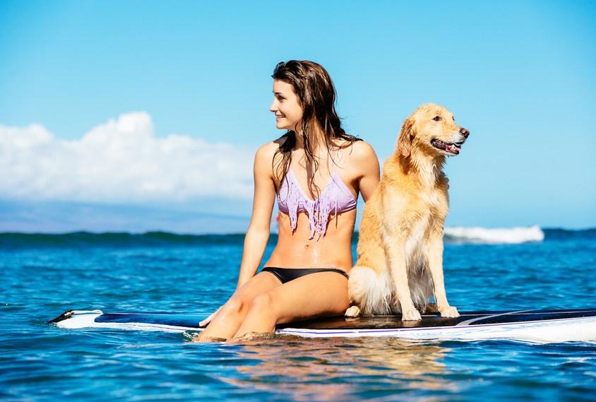 Urlaubsreise mit Hund buchen