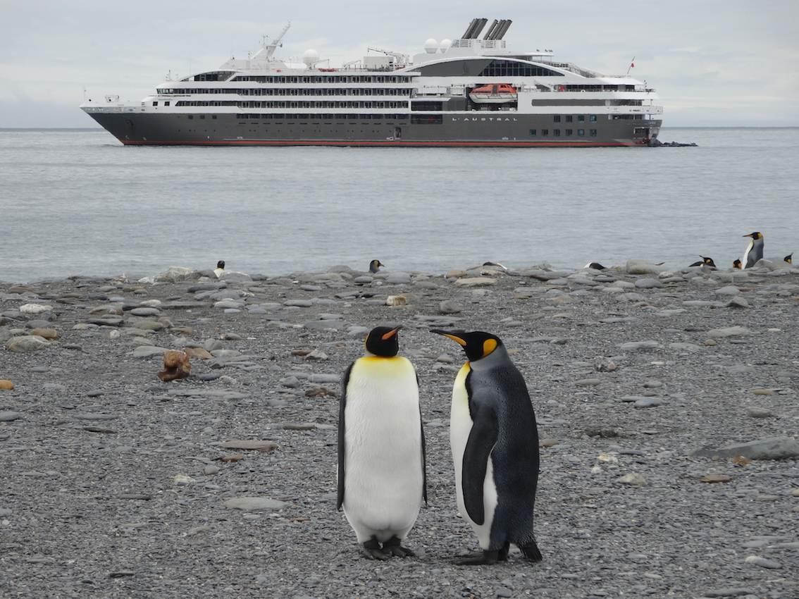 Antarktis Reise buchen