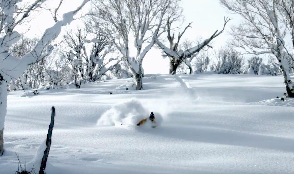 Niseko Skifahren