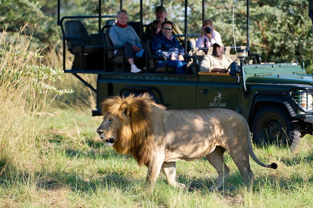 Jao Camp Safari Botswana