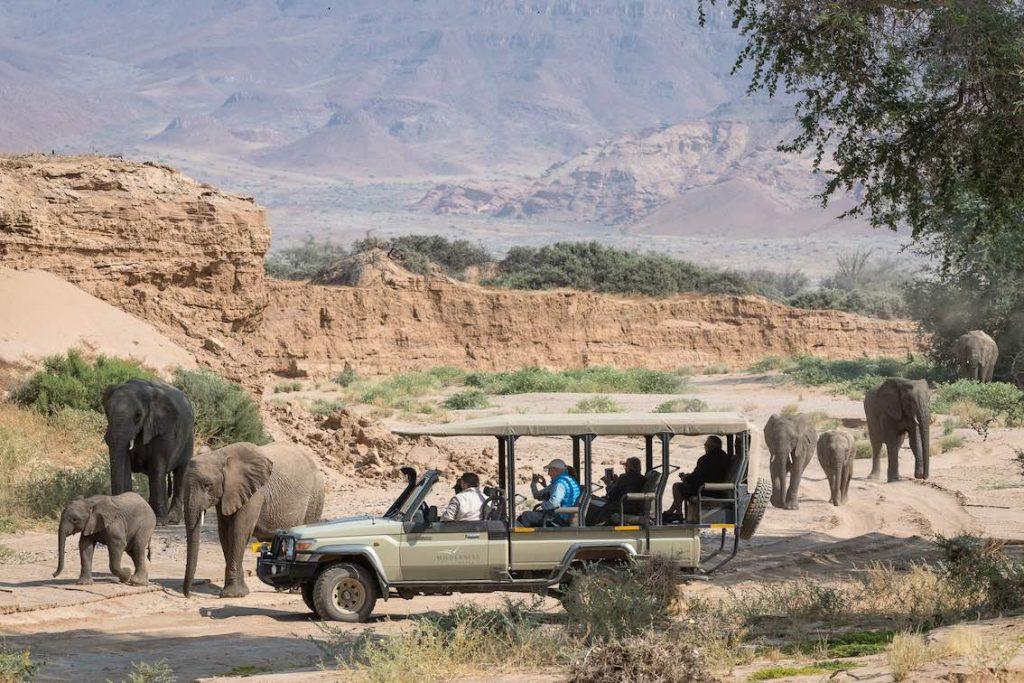 Elefantenherde und Jeep